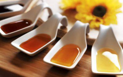Conoce los tipos de miel y sus beneficios